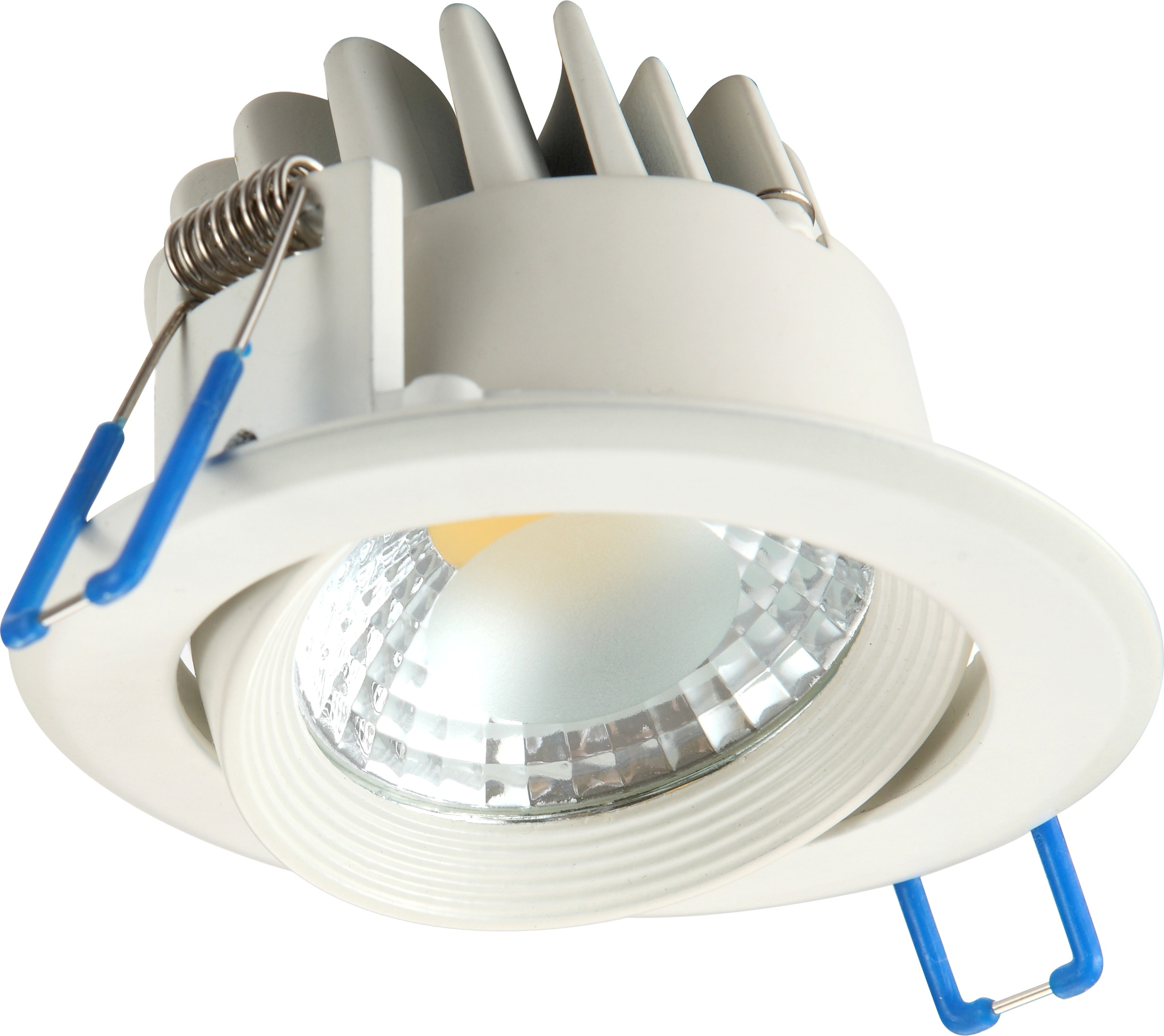 LED Downlight Idalia V Image