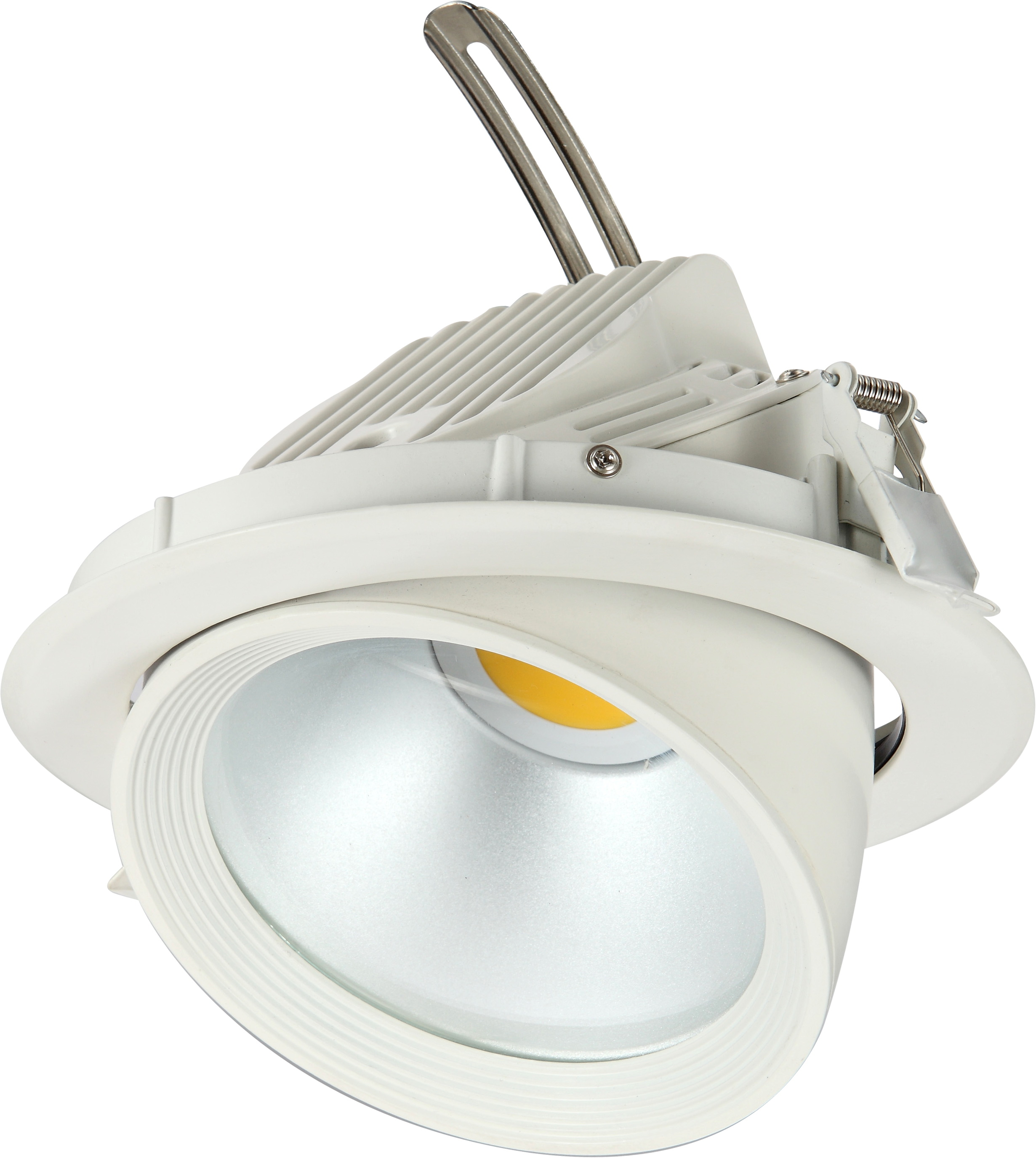 LED Downlight Vision Image